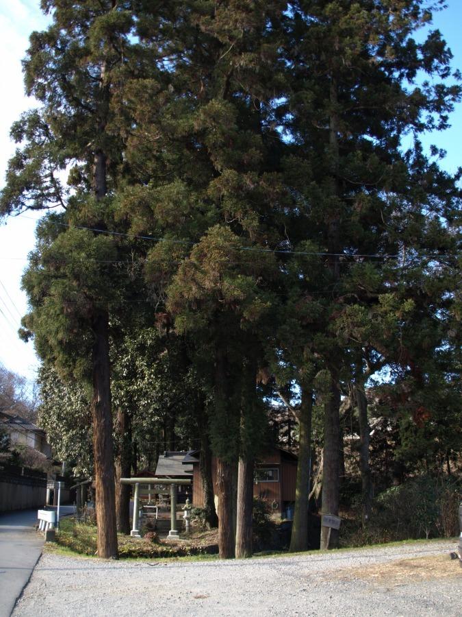 20121月3日御霊谷.jpg